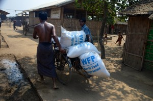 Rohingya refugees carting rice rations inside camp near Sittwe, April 2014 (Photo: Simon Roughneen)